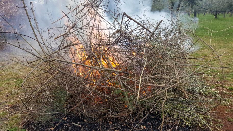 spaljivanje granja