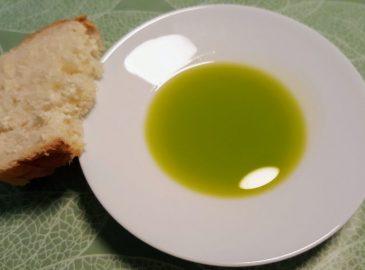 frischer Olivenöl Bilini