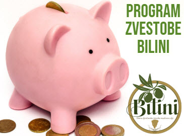 Program zvestobe